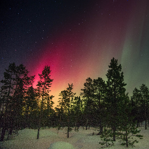 Reddish aurora with some green.